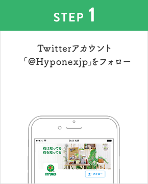 STEP1:Twitterアカウント「Hyponexjp」をフォロー