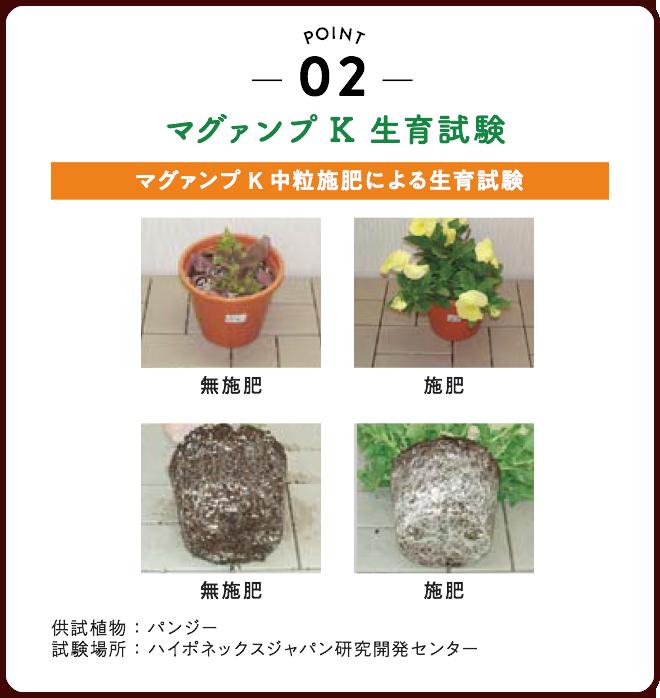 02 : マグァンプK 生育試験